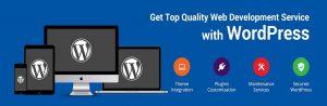 Best WordPress Website Development in California, USA