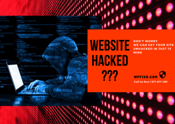 Hacked Website Recovery Service